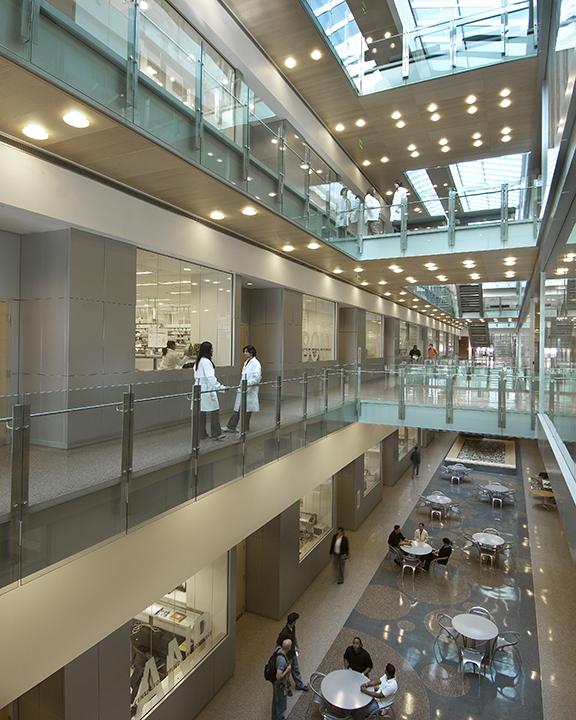 The Biodesign Institute