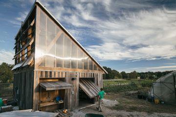 Urban Farm Shed